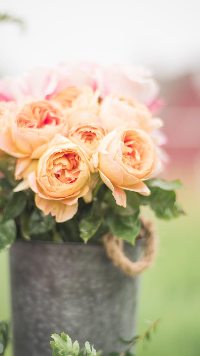 Golden Bliss FlowerFarm