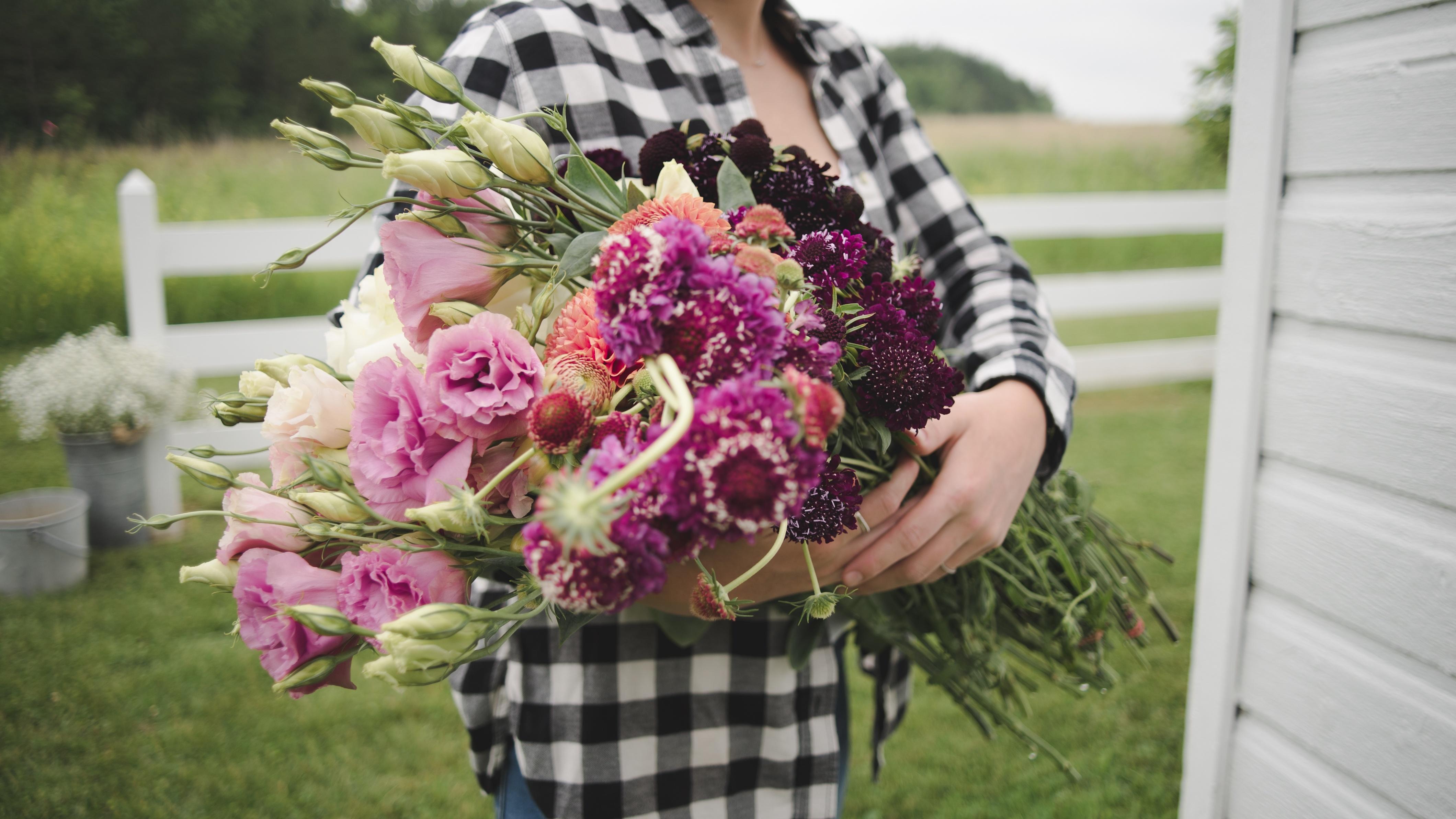 FlowerFarm fresh