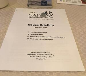 Details SAFCAD Issues Briefing