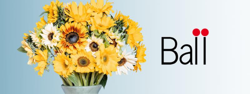 ballsunflowers