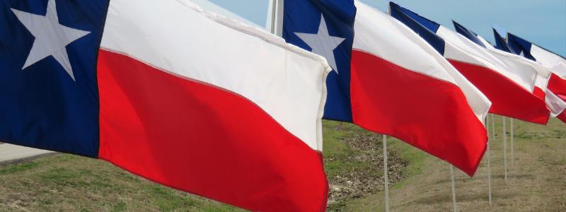 texasflag