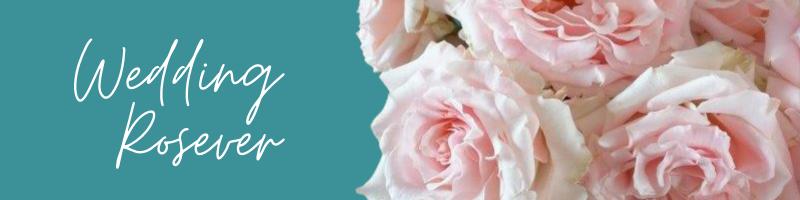wedding-rosever-1
