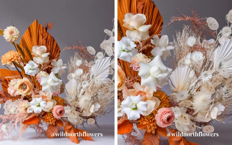 wildnorthflowers